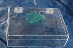 Port tricks green leaf